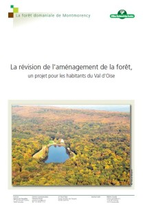 Amenagement foret Montmorency